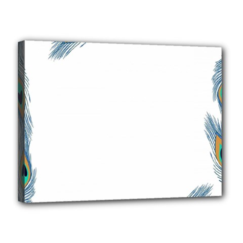 Beautiful Frame Made Up Of Blue Peacock Feathers Canvas 16  X 12  by Simbadda