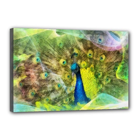 Peacock Digital Painting Canvas 18  X 12  by Simbadda