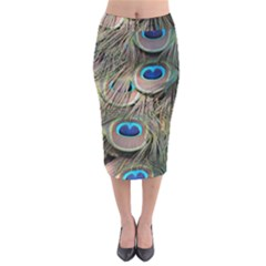 Colorful Peacock Feathers Background Midi Pencil Skirt by Simbadda