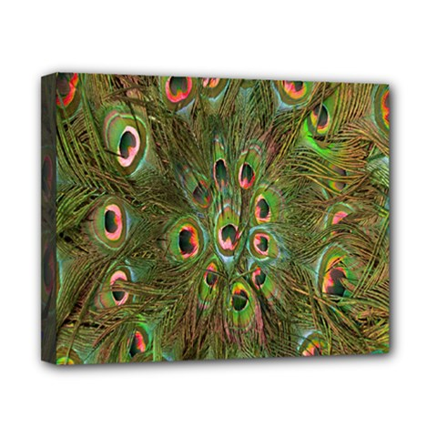 Peacock Feathers Green Background Canvas 10  X 8  by Simbadda