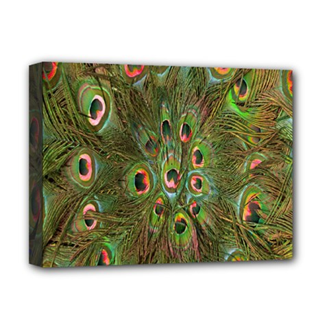 Peacock Feathers Green Background Deluxe Canvas 16  X 12   by Simbadda