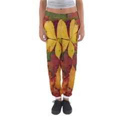 Colorful Autumn Leaves Leaf Background Women s Jogger Sweatpants by Amaryn4rt