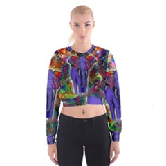 Abstract Elephant With Butterfly Ears Colorful Galaxy Women s Cropped Sweatshirt by EDDArt