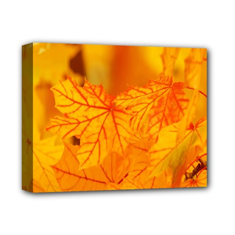 Bright Yellow Autumn Leaves Deluxe Canvas 14  X 11  by Amaryn4rt