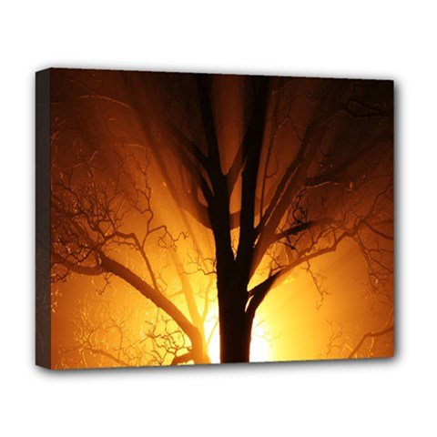 Rays Of Light Tree In Fog At Night Deluxe Canvas 20  X 16   by Amaryn4rt