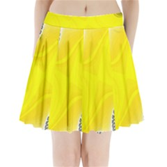 Fractal Abstract Background Pleated Mini Skirt by Amaryn4rt
