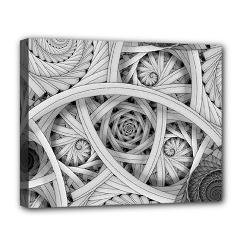 Fractal Wallpaper Black N White Chaos Deluxe Canvas 20  X 16   by Amaryn4rt
