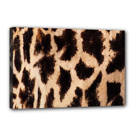 Yellow And Brown Spots On Giraffe Skin Texture Canvas 18  X 12  by Amaryn4rt