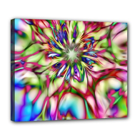 Magic Fractal Flower Multicolored Deluxe Canvas 24  X 20   by EDDArt