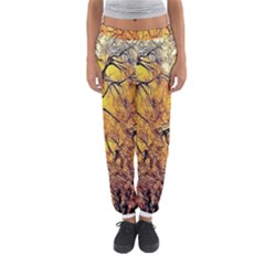 Summer Sun Set Fractal Forest Background Women s Jogger Sweatpants by Amaryn4rt