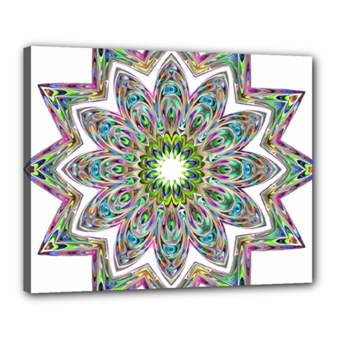 Decorative Ornamental Design Canvas 20  X 16  by Amaryn4rt