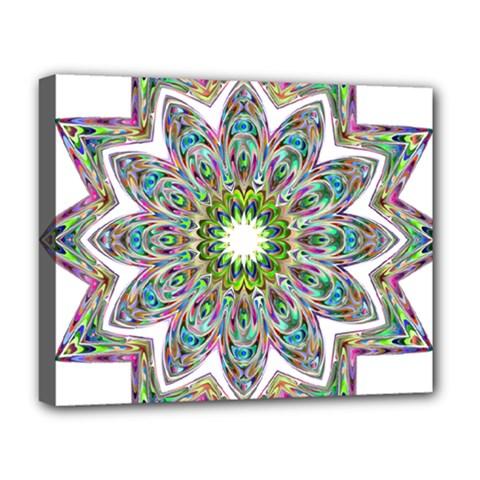 Decorative Ornamental Design Deluxe Canvas 20  X 16