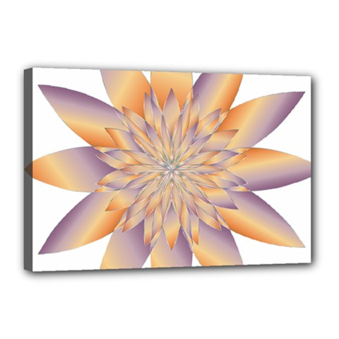 Chromatic Flower Gold Star Floral Canvas 18  X 12  by Alisyart