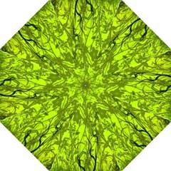 Concept Art Spider Digital Art Green Straight Umbrellas by Simbadda