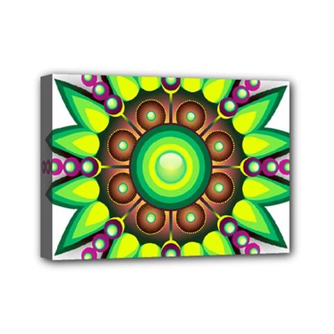 Design Elements Star Flower Floral Circle Mini Canvas 7  X 5  by Alisyart