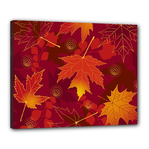 Autumn Leaves Fall Maple Canvas 20  X 16  by Simbadda