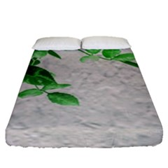 Plants Over Wall Fitted Sheet (queen Size) by dflcprints