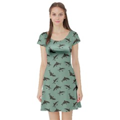 Turquoise Pattern Sharks Short Sleeve Skater Dress