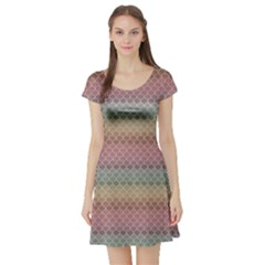 Pink Colorful Rainbow Chevron Pattern Short Sleeve Skater Dress