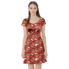 Red Vegetable Organic Food Ripe Sliced Tomato Pattern Short Sleeve Skater Dress