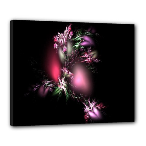 Colour Of Nature Fractal A Nice Fractal Coloured Garden Canvas 20  X 16  by Simbadda