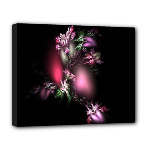 Colour Of Nature Fractal A Nice Fractal Coloured Garden Deluxe Canvas 20  X 16   by Simbadda