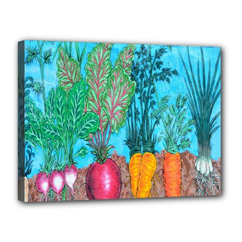 Mural Displaying Array Of Garden Vegetables Canvas 16  X 12  by Simbadda
