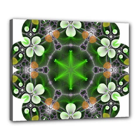Green Flower In Kaleidoscope Canvas 20  X 16  by Simbadda
