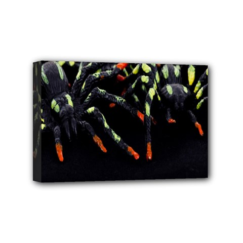 Colorful Spiders For Your Dark Halloween Projects Mini Canvas 6  X 4  by Simbadda
