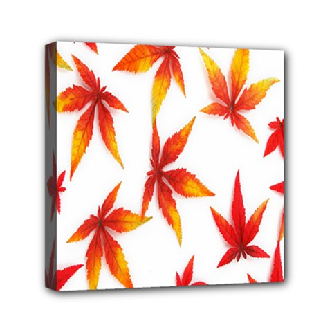 Colorful Autumn Leaves On White Background Mini Canvas 6  X 6  by Simbadda