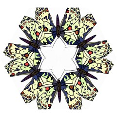 A Colorful Butterfly Image Mini Folding Umbrellas by Simbadda