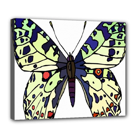 A Colorful Butterfly Image Deluxe Canvas 24  X 20   by Simbadda