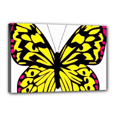 Yellow A Colorful Butterfly Image Canvas 18  X 12