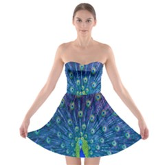 Amazing Peacock Strapless Bra Top Dress