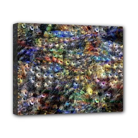 Multi Color Peacock Feathers Canvas 10  X 8  by Simbadda