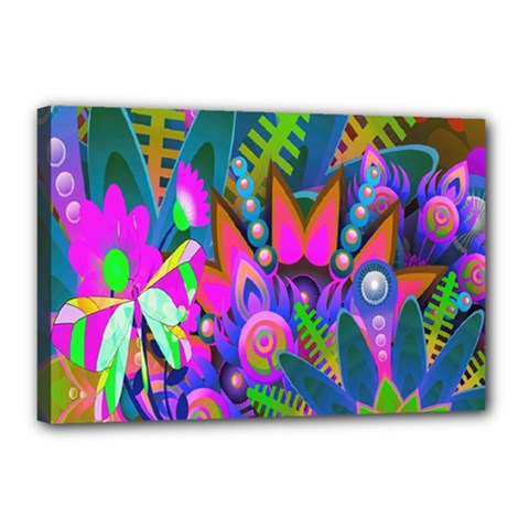 Wild Abstract Design Canvas 18  X 12