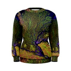 Lena River Delta A Photo Of A Colorful River Delta Taken From A Satellite Women s Sweatshirt