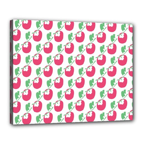 Fruit Pink Green Mangosteen Canvas 20  X 16  by Mariart