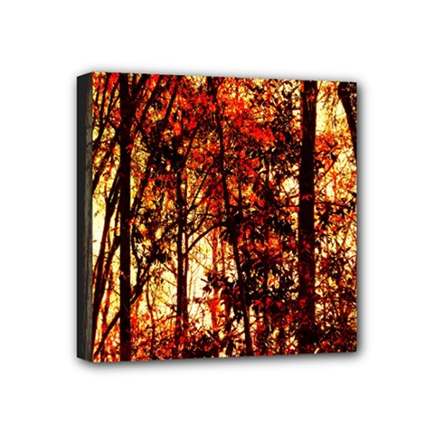 Forest Trees Abstract Mini Canvas 4  X 4  by Nexatart