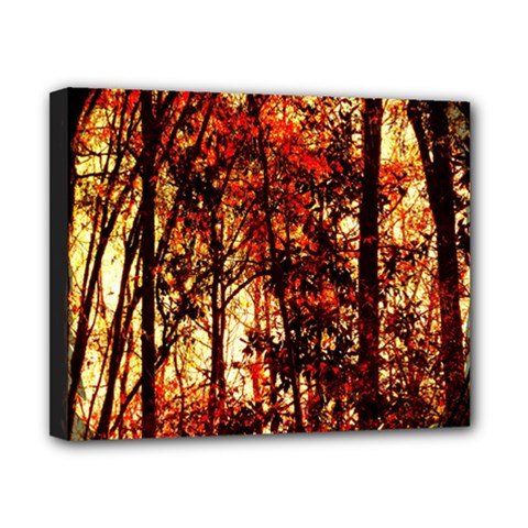 Forest Trees Abstract Canvas 10  X 8  by Nexatart