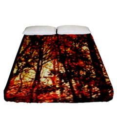 Forest Trees Abstract Fitted Sheet (queen Size)