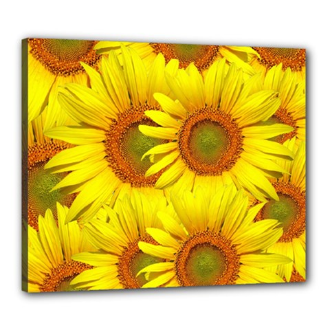 Sunflowers Background Wallpaper Pattern Canvas 24  X 20