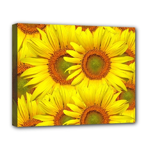 Sunflowers Background Wallpaper Pattern Deluxe Canvas 20  X 16