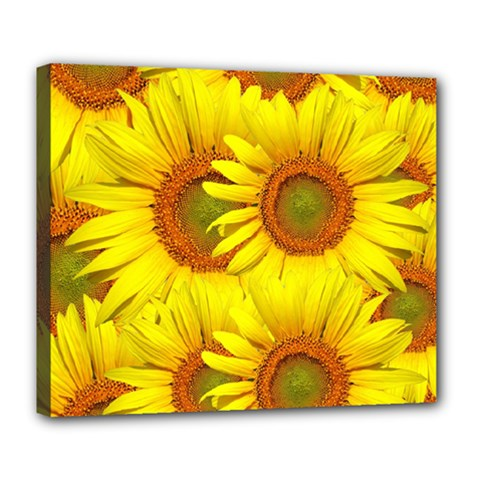 Sunflowers Background Wallpaper Pattern Deluxe Canvas 24  X 20   by Nexatart