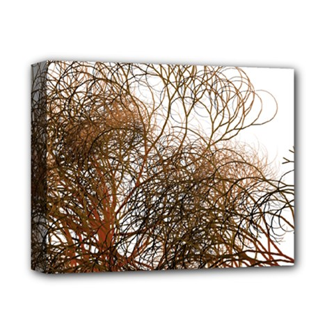 Digitally Painted Colourful Winter Branches Illustration Deluxe Canvas 14  X 11  by Nexatart