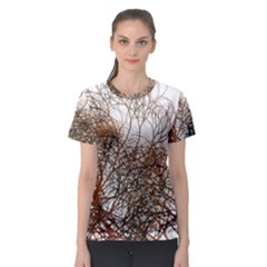 Digitally Painted Colourful Winter Branches Illustration Women s Sport Mesh Tee