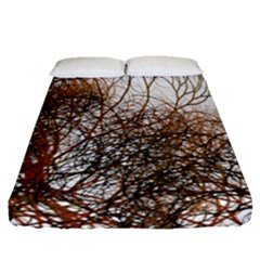 Digitally Painted Colourful Winter Branches Illustration Fitted Sheet (queen Size) by Nexatart