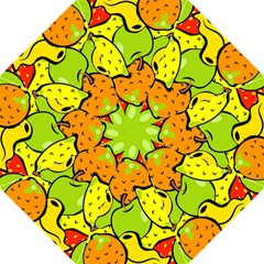 Digitally Created Funky Fruit Wallpaper Hook Handle Umbrellas (large)