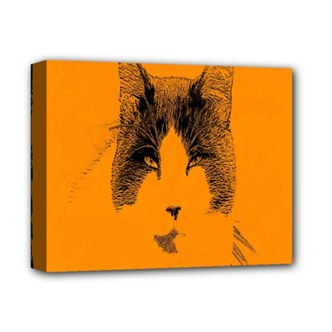 Cat Graphic Art Deluxe Canvas 14  X 11  by Nexatart