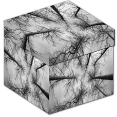 Trees Without Leaves Storage Stool 12   by Nexatart